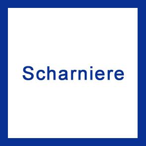 Scharniere V4A