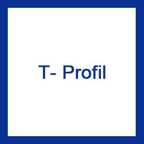 T-Profil V2A